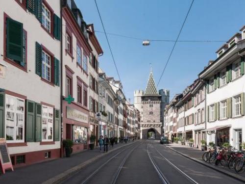 Basel Münsterpfalz witech serbia krusevac31